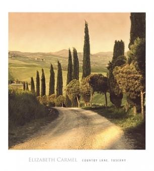 Carmel Elisabeth - Country Lane, Tuscany